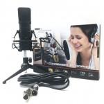 RENTON ST100 Kit Bundle Microfono da Studio con Accessori
