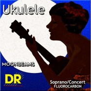 DR UFSC Ukulele Soprano /...